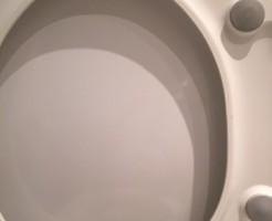 トイレの中ぶたのその後。汚れ落ちました!
